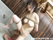 Sweet Asian gal Hello Mikity enjoys spanking and anal sex action.
