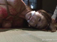 Hot submissive Japanese girl Reiko Sawamura gets involved to a nasty sex game by her mad lover.
