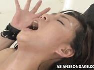 Her hairy cunt gets stimulated with a vibrator and the poor girl is moaning out.